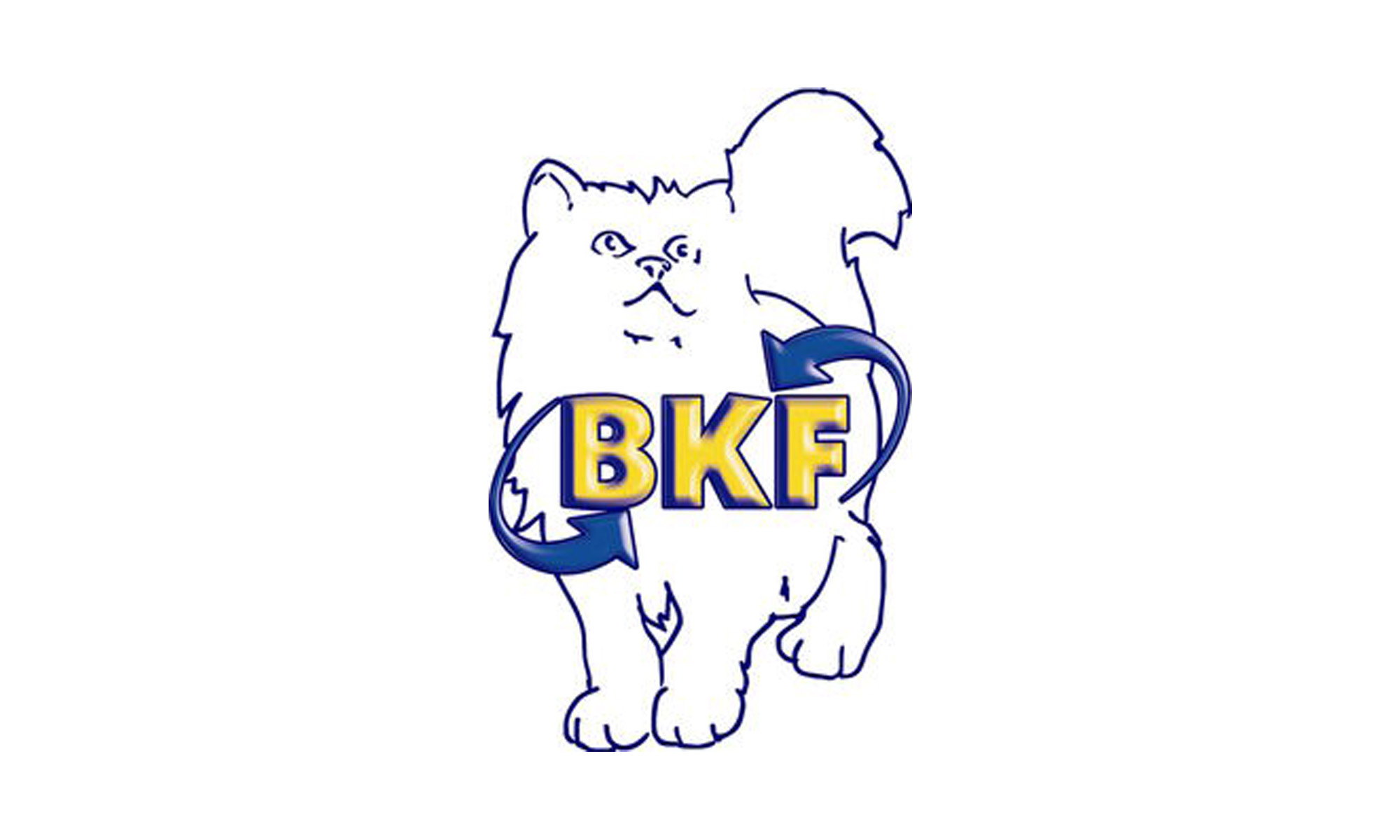 BKF Schule GmbH