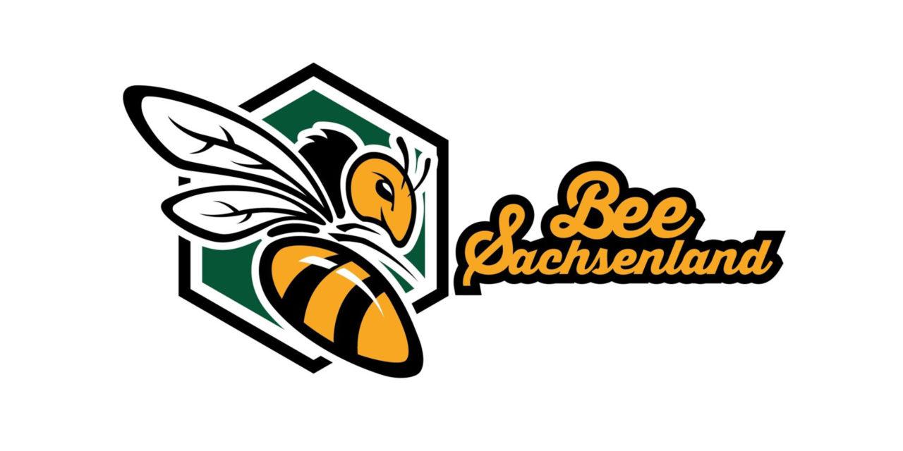 Bee Active! Sachsenland Transport und Logistik GmbH Dresden setzt sich für den Erhalt der Honigbiene ein